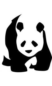 padded-panda1.jpg